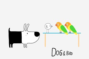 Dog & Bird and Lovebirds