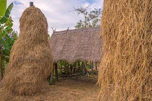 stack of straw or hay bales