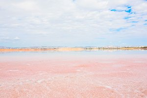 Larnaca pink Salt Lake landsape