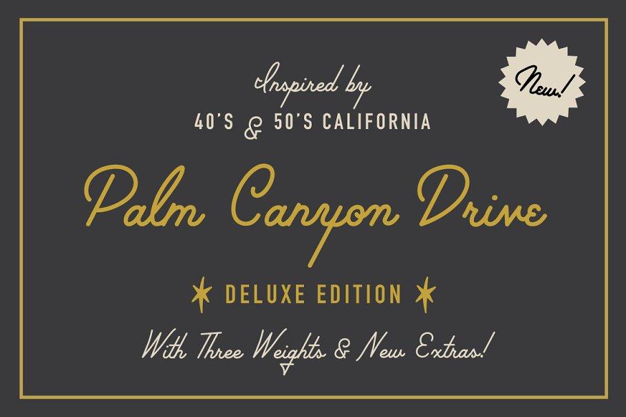 Palm Canyon Drive | Script & Glyphs ~ Script Fonts ~ Creative Market