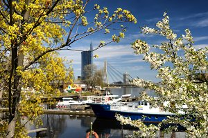 The port of Riga in the spring