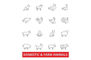 Domestic farm animals line icons. Cow, dog, cat, donkey, chicken, duck, goose, pig, sheep. Editable strokes. Flat design vector illustration symbol concept. Linear signs isolated on white background