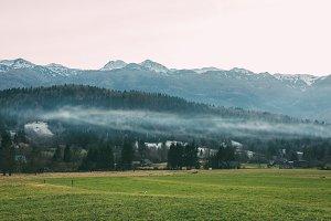 Fog, mountains, green field