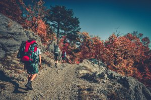 People are hiking in Carpathian mountains