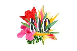 "Floral collage "" Rio"""