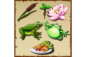Great frog kingdom, vector set