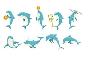 Bottlenose Dolphin Performing Tricks Set of Illustrations