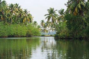 River, Kerala backwaters, India
