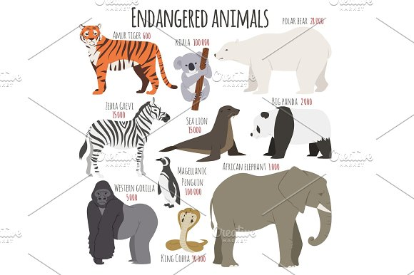 Different Kinds Deleted Species Dying Rare Uncommon Red Book Animals Characters Vector Illustration