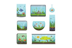 Transparent aquarium isolated on white fish habitat aquarian house underwater tank bowl vector illustration