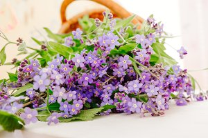 Wild flowers in a basket