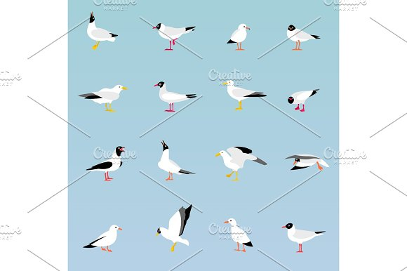 Vector Set Of Beautiful Seagulls