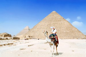 Tourist riding on camel
