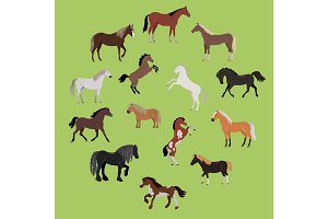 Illustration of Different Breeds of Horses