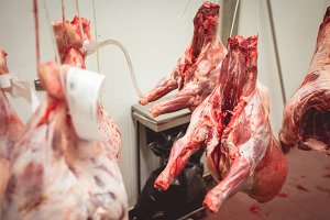 Peeled red meat hanging in the storage room