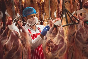 Butcher sticking barcode stickers on red meat in storage room