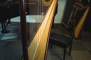 Harp in music school