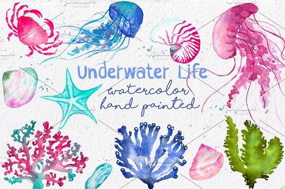 Underwater Life ClipArt Watercolor