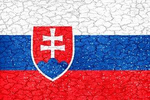 Slovakia Grunge Style National Flag