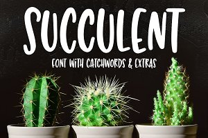 Succulent: a hand-lettered font