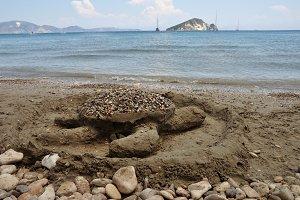 Sand Turtle Beach