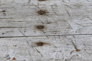Grungy wood planks