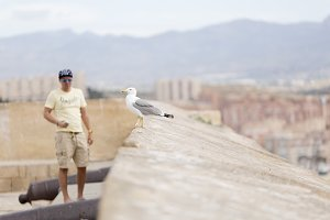 Man observing a seagull