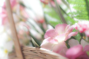 Pink plastic flowers