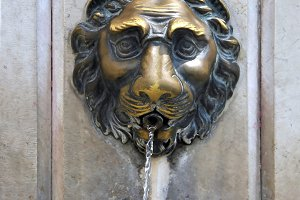 Lion faucet in Venice, Italy