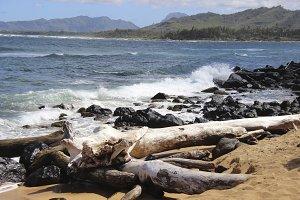 Beach Waves in Hawaii
