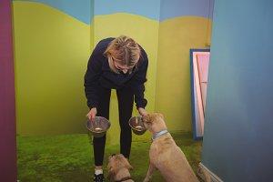 Woman feeding dogs