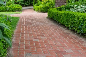 Brick path with green hedge
