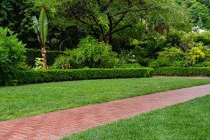 Lawn and brick walk