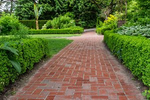 Brick walkway with hedges