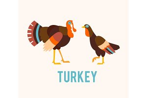 Turkeys in a flat style.