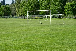 Soccer field and net