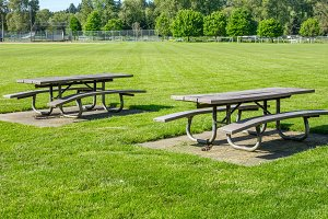 Picnic tables at a park
