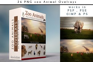 26 - PNG - Zoo Animal Overlays