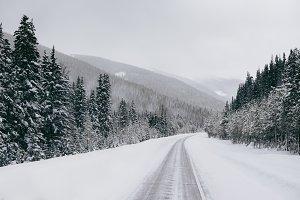 Snowy Pine Mountain Road