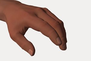 Human Hand Fingers