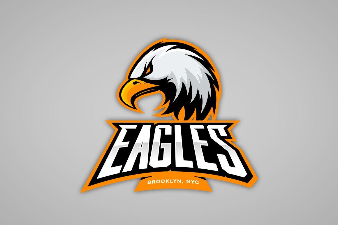 eagle mascot sport logo design illustrations creative market