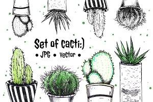 Cute cacti in the potties.