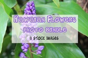 Hawaiian Flowers Photo Bundle