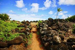 Beach Path with Rocks