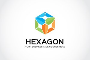 Hexagon Logo Template