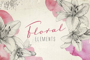 Floral pencil sketch elements (png)