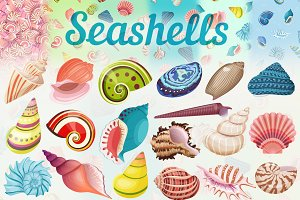 Seashells set & patterns collection