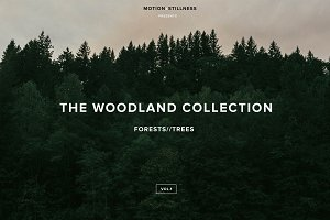 The Woodland Collection (Photo Pack)