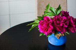 Summer concept with bright peonies
