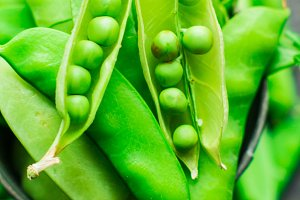 Organic food concept - green peas